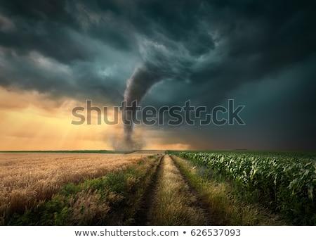 Kasırga alan manzaralı görmek akşam karanlığı Stok fotoğraf © mike_expert