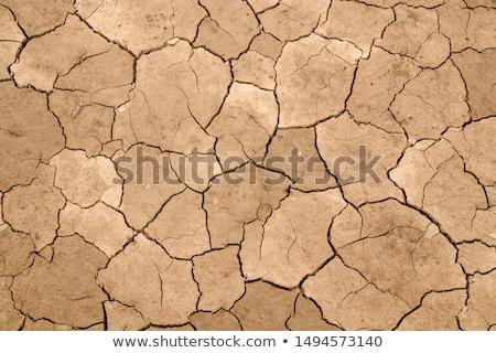 rachado · terra · grama · mudança · climática · aquecimento · global · textura - foto stock © zhukow
