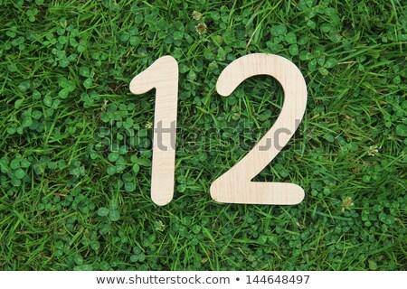 Trébol hierba rima hierba verde hoja fondo Foto stock © chesterf