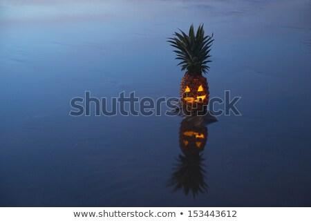 lámpás · tükröződés · halloween · étel · mosoly · fény - stock fotó © KonArt