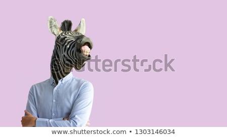 vicces · zebra · kép · állatkert · kilátás · portré - stock fotó © fouroaks