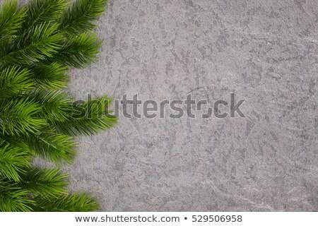 グリーティングカード · ツリー · 中心 · 芸術 · 冬 · カード - ストックフォト © Lenlis