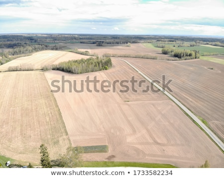 plowed land Stock photo © xedos45