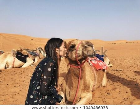 üres · negyed · tevék · Omán · Szaúd-Arábia · Jemen - stock fotó © w20er
