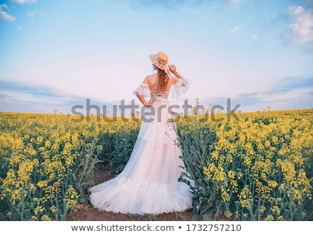 rapeseed field   vintage retro style stock photo © mikko