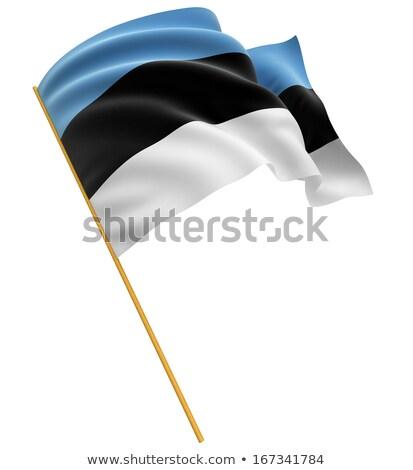 Estônia bandeira branco voador vento Foto stock © 5xinc