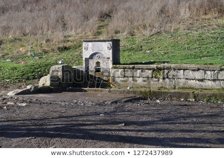 Holstein Cow Next to a Wall Stock photo © rhamm