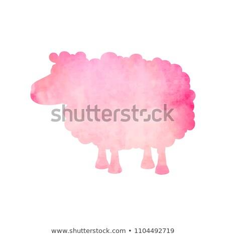 Resumen púrpura colorido ovejas lana vector Foto stock © mcherevan