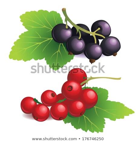 monte · vermelho · brilhante · verão · jardim · natureza - foto stock © digitalr