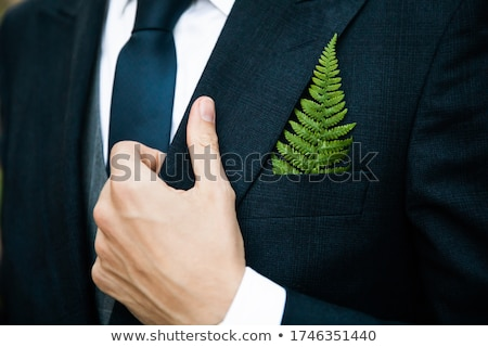 handsome business man closing his jacket Stock photo © feedough