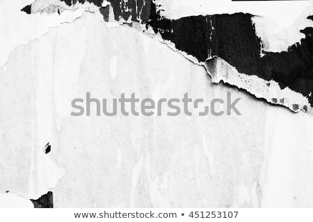 Szakadt poszter papír grunge textúra városi grafikai tervezés Stock fotó © stevanovicigor