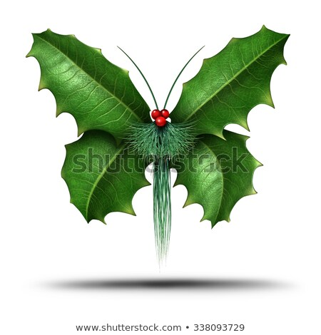 Magical Holiday Holly Butterfly Stock photo © Lightsource