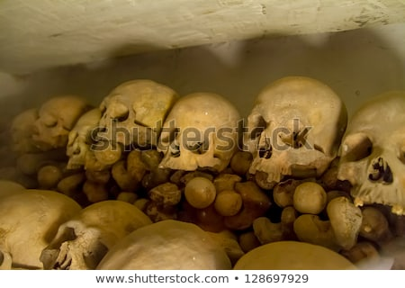real human skulls from the middle ages in lima stock photo © meinzahn