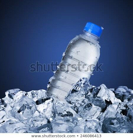 Wasserflasche Eiswürfel Glas Wasser Eis blau Stock foto © alex_l