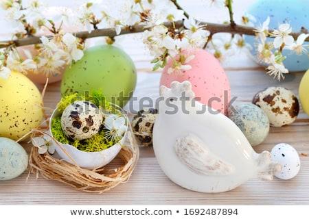 Easter Hen stock photo © funix