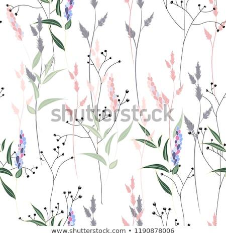 grass seamless pattern stock photo © nekiy