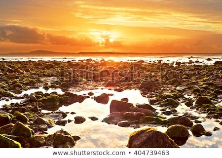 Reflexões praia maneira Irlanda belo Foto stock © morrbyte