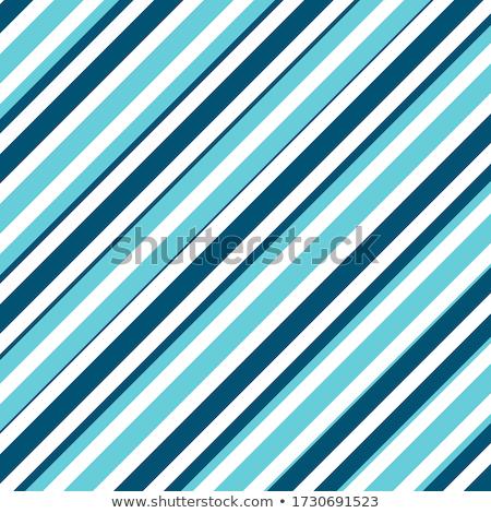Vektor schwarz weiß parallel Diagonale Streifen Stock foto © CreatorsClub