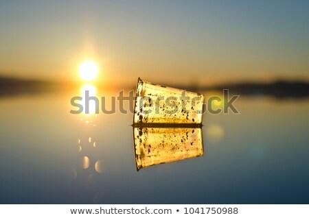 Kirli çöp gölet örnek doğa manzara Stok fotoğraf © bluering