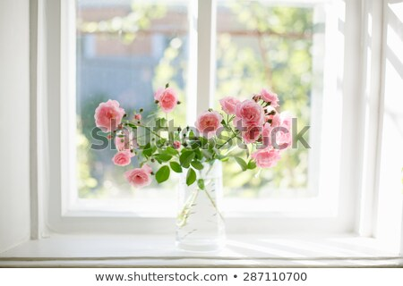 Janela rosas vaso ilustração flor nuvens Foto stock © bluering