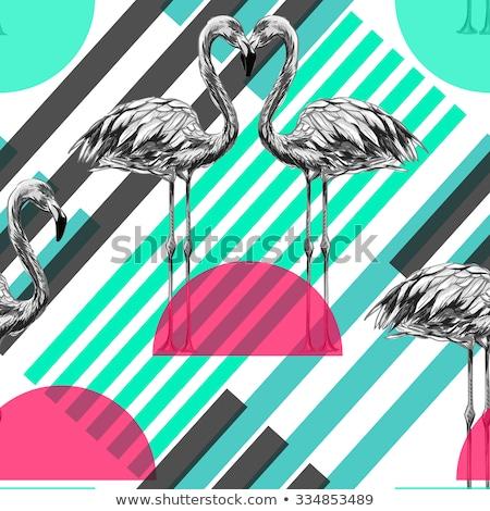fekete · rózsaszín · csíkos · flamingó · madár · minta - stock fotó © yopixart