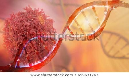 cancer treatment medical concept 3d stock photo © tashatuvango