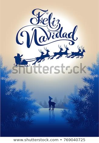 Übersetzung spanisch heiter Weihnachten Silhouette Stock foto © orensila