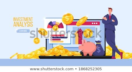 Landing Page of Laptop with Budget Planning Concept. Stock photo © tashatuvango