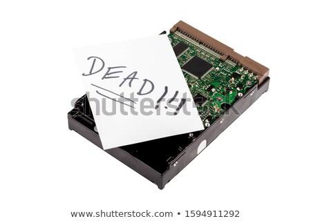 ストックフォト: コンピュータ · データ · 損失 · 抽象的な · 効果 · デジタル
