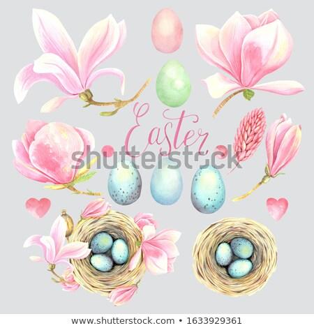 Wielkanoc gniazdo rustykalny magnolia kwiaty szczęśliwy Zdjęcia stock © Zerbor