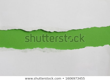 Green Paper With Torn Stock photo © barbaliss