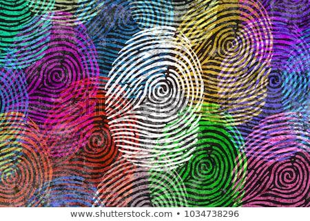 Diversity Identity Stock photo © Lightsource