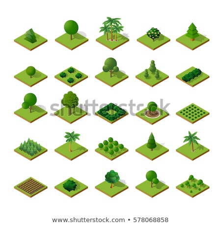 Park plant and green grass isometric 3D icon Stock photo © studioworkstock