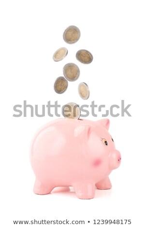 Money getting insert on piggy bank Stock photo © wavebreak_media