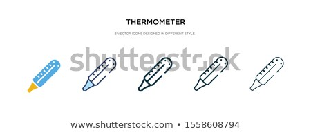 thermometer · icon · verschillend · stijl · vector · symbool - stockfoto © sidmay