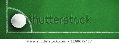 Beyaz deri futbol çim futbol sahası Stok fotoğraf © wavebreak_media