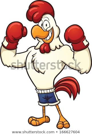 Rajz kakas box illusztráció boxkesztyűk tyúk Stock fotó © cthoman