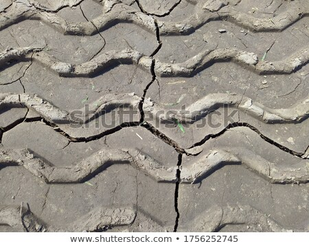 Wavy road in the field at daytime Stock photo © colematt