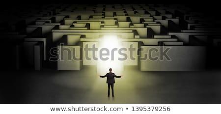 Elveszett üzletember áll megvilágított labirintus bejárat Stock fotó © ra2studio