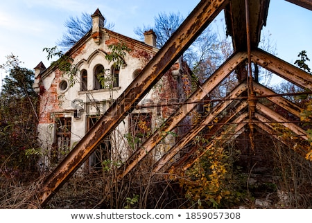 宮殿 古い 捨てられた 地域 ウクライナ 森林 ストックフォト © Givaga
