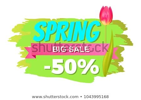 Spring Sale Price Tags on Brush Strokes Springtime Stock photo © robuart