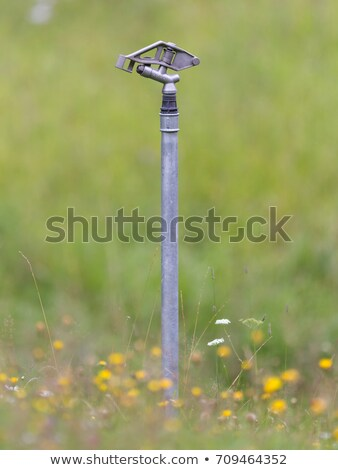 Sprinkler system in the Austrian Alps Stock photo © michaklootwijk