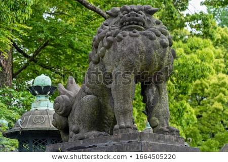 Leão cão estátua Tóquio Japão guardião Foto stock © daboost
