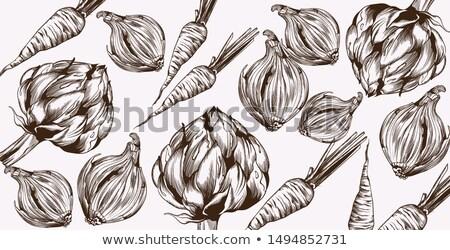 Artichoke and onions Vector line art. Veggies pattern fresh harvests Stock photo © frimufilms