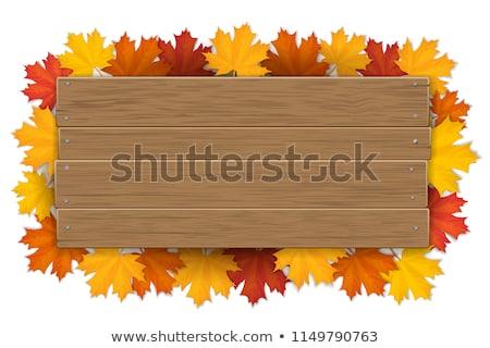 Holz Zeichen Zweig Natur Illustration Hintergrund Stock foto © bluering