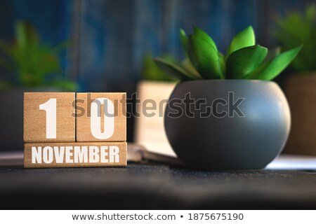 Cubes calendar 10th November Stock photo © Oakozhan