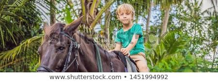 Boy horseback riding, performing exercises on horseback BANNER, LONG FORMAT Stock photo © galitskaya