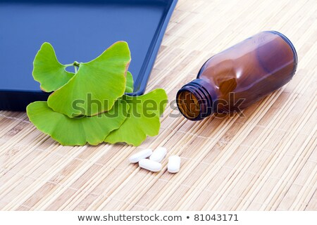 Ginkgo Biloba tree spirit and the medicine. Stock photo © justinb