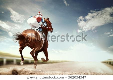 Foto stock: Carreras · de · caballos · jockey · acción · caballo · carreras · tema