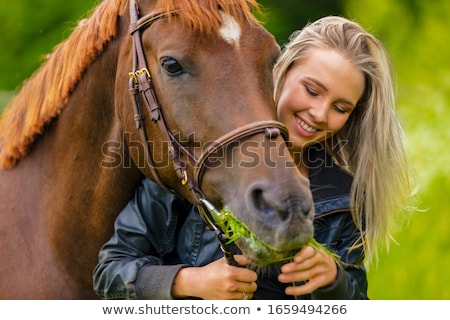 young woman and horse Stock photo © cynoclub
